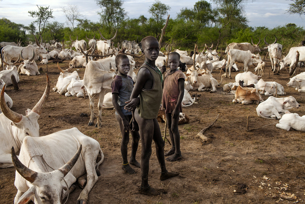 South Sudan Quot A Wild Country Grows In South Sudan Quot Marco